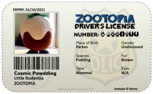 license17558233